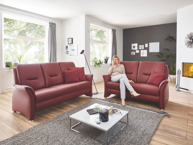 <p><strong>Rotes Ledersofa</strong><br /> Einzelsofa in Leder rot als 2- und 3-Sitzer.</p>